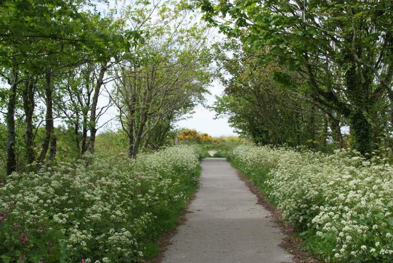 Walking and cycling trails such as The Great Flat Lode are on yours to explore right on the doorstep.