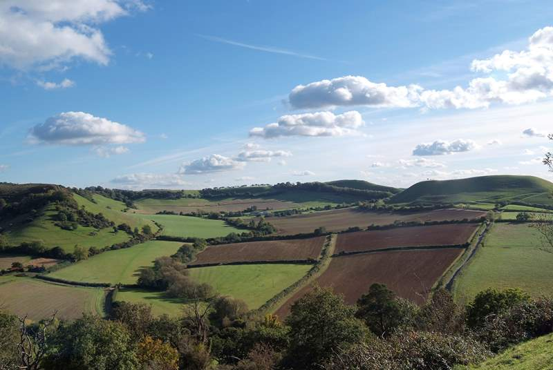 This is a view of the classic Somerset landscape.