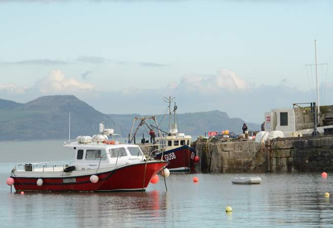Fishing boats at Lyme Regis, with The Jurassic Coast and Golden Cap in the distance.