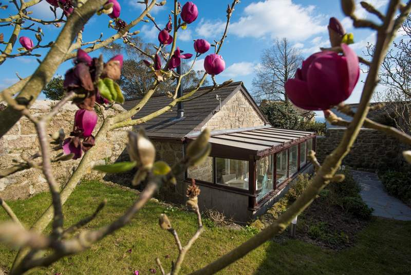 Your own private garden and a sunny conservatory.