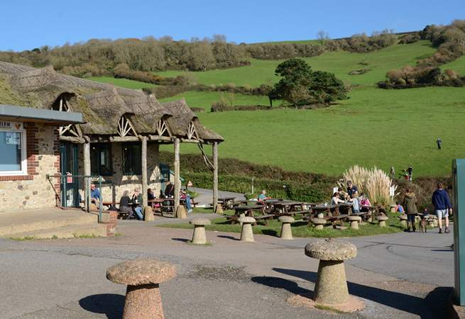 The award-winning Sea Shanty Beach cafe at Branscombe beach serves delicious locally-caught seafood.