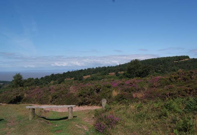 Take a picnic up into the hills and look out across the Bristol Channel to south Wales!