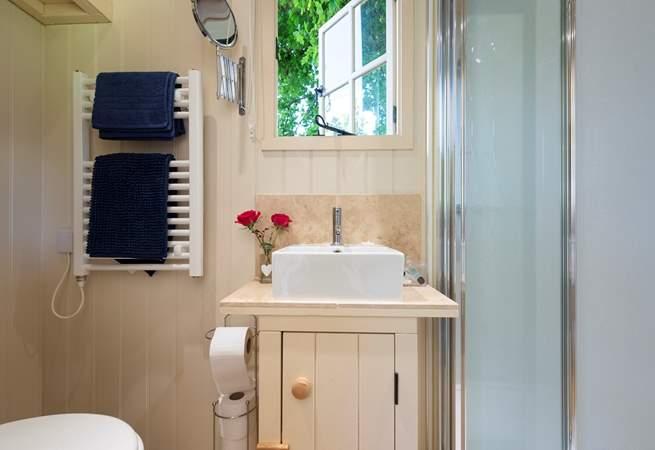 The pretty wash-basin.