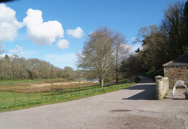 The Penrose Estate wraps around the lake at Loe Bar, such a pretty area to explore with paths through the woods.