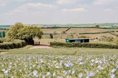Shepherd's Sky Super Hut. Sleeps 5, 5.9 miles SW of Tiverton