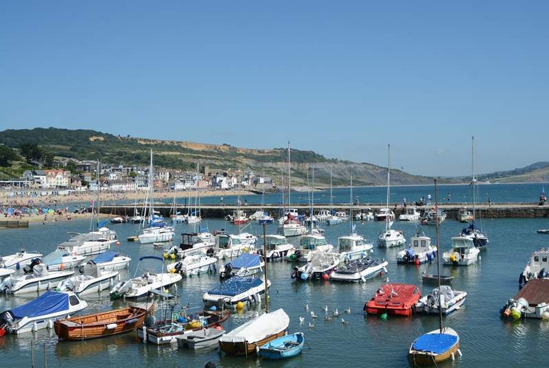 Lyme Regis has a pretty harbour, a long curving beach with sand one end and pebbles the other, a long promenade and a lovely high street of independent shops and cafes.