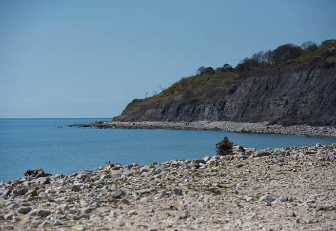 You really are right on the beach here, the cliffs are formed of blue lias clay, where many a fossil has been discovered over the years.