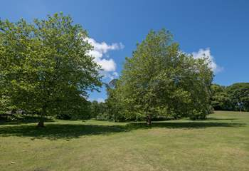 Part of the extensive grounds and parkland surrounding the property.