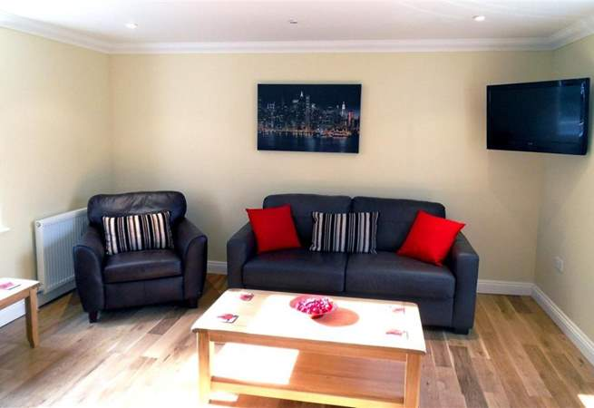 Large TV with Freeview and a DVD player.