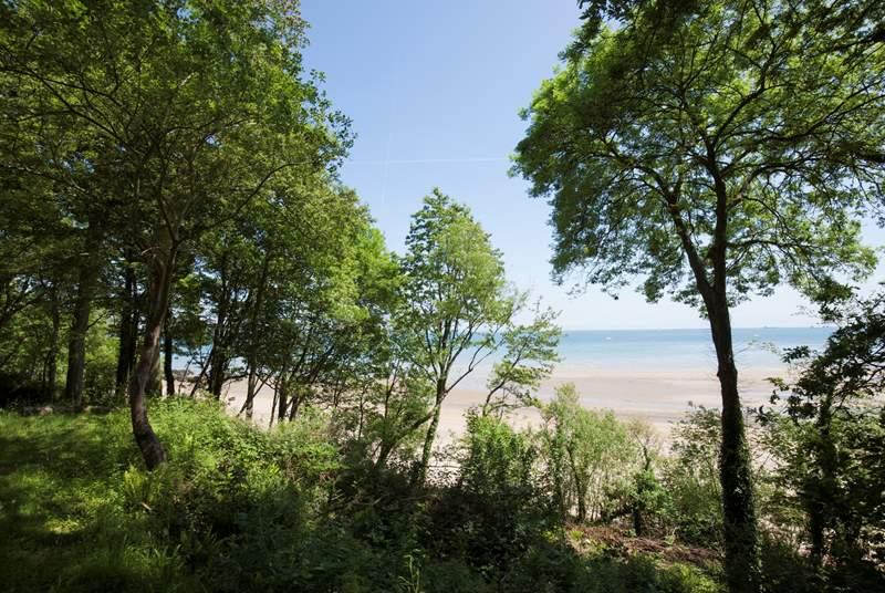 Take a short walk down to Priory Bay beach.