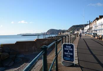 Sidmouth has lots of restaurants, pubs and a wonderful ice cream parlour.
