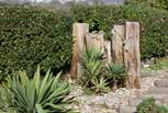 The garden is full of interesting and exotic plants and features.