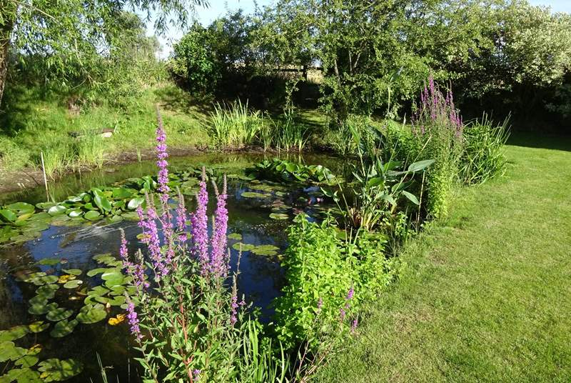 The cottage has a really large, beautifully maintained and private garden with a wildlife pond and different places to sit to make the most of it.