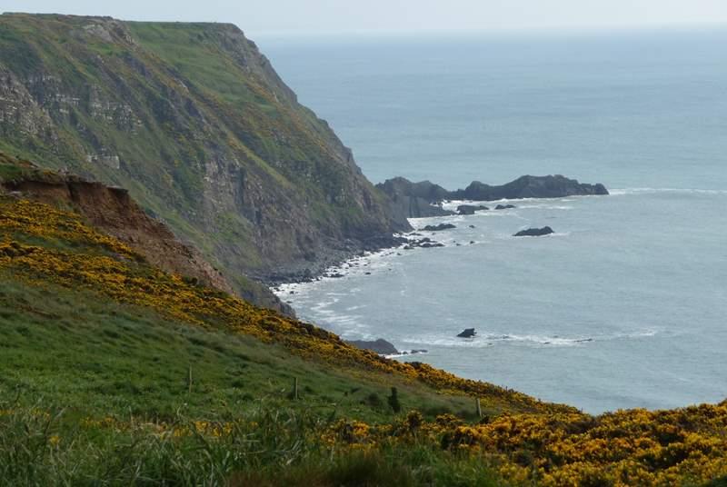 The dramatic north Cornwall coastline.