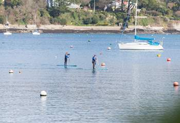 Paddle boarders out on the water...there's always something to watch, even in winter!