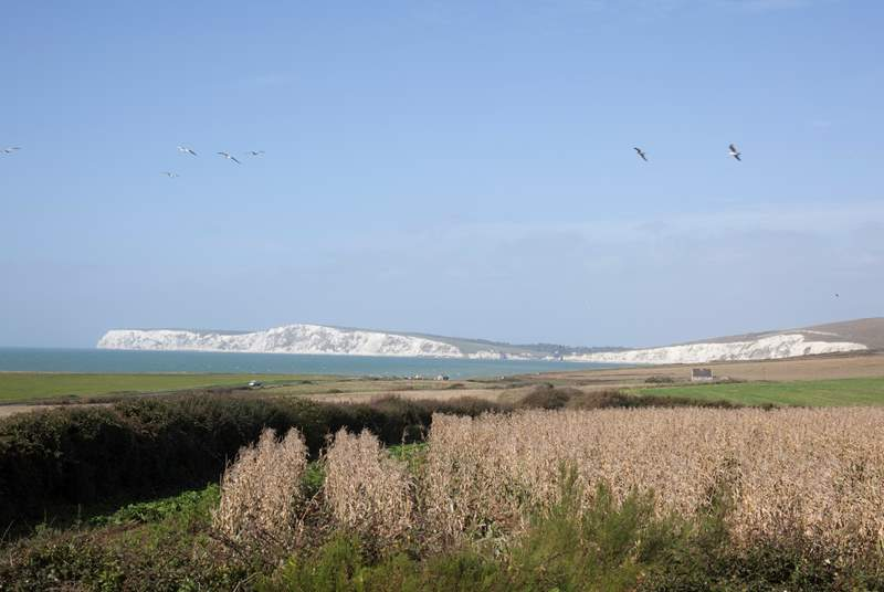 Look out to the gorgeous white cliffs of the Isle of Wight, a remarkable scene to be appreciated from the dining-room and kitchen