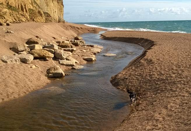 Hive beach at Burton Bradstock to the east of Seatown is great for walking your dog all year round.