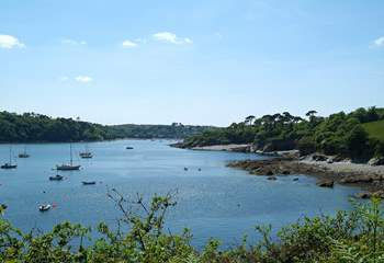 Walks around the Helford River will take you along quiet creeks, across golden beaches and through lush, sub-tropical gardens at Trebah and Glendurgan.