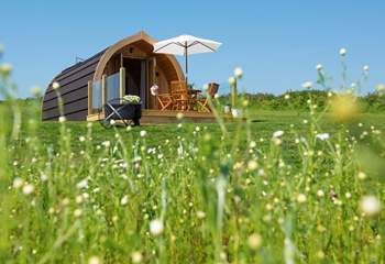 Set in a pretty meadow with plenty of space all around.