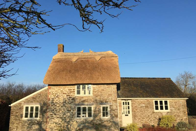 This gorgeous cottage has recently been re-thatched. Spot the sweet pair of pheasants perched on the roof.