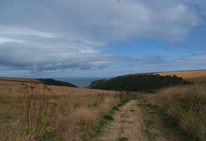 A footpath from the top of the village takes you straight to the coastal path and a hidden bay.