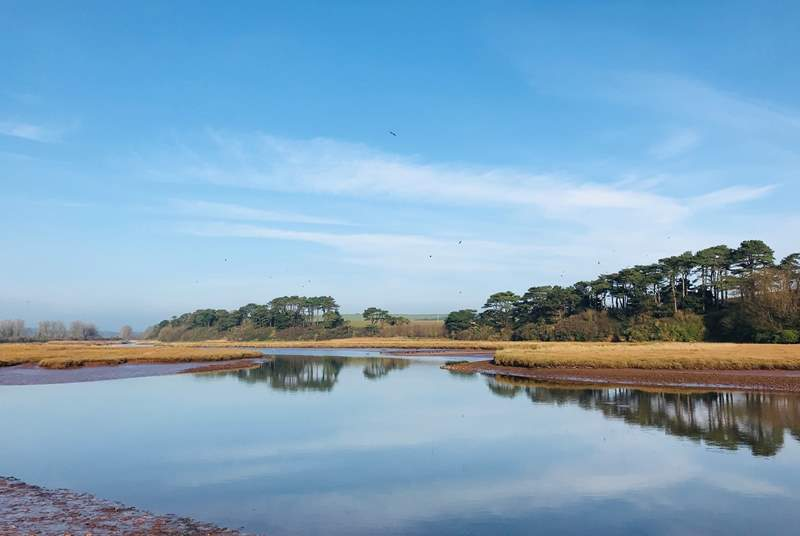 Pay a visit to the peaceful Otter Estuary Nature Reserve.