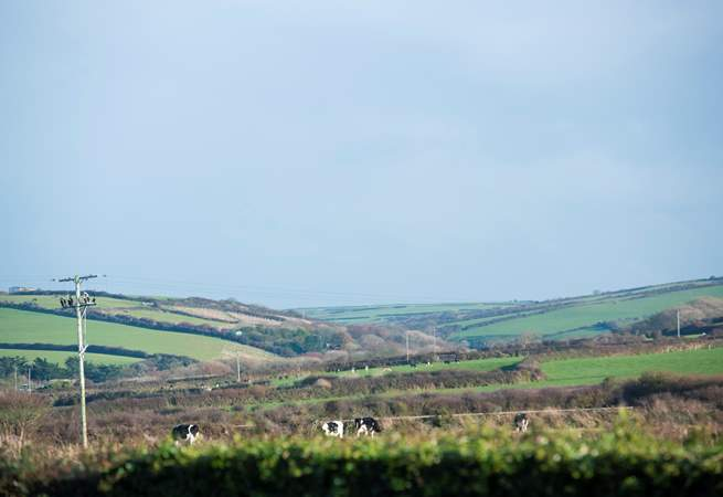 Whilst there are sea views to enjoy at the back of Ingledene, there is rolling countryside at the front.