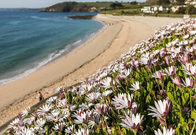 Take a short stroll to Gyllyngvase beach.