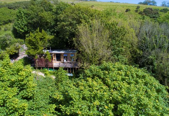 This idyllic retreat is sat high up in the trees with a peaceful stream trickling through below and the sea only a few yards away.