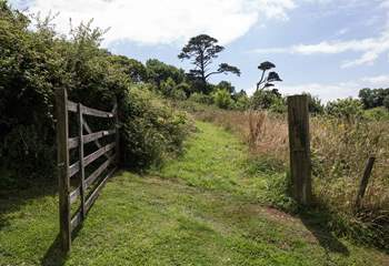 For the walkers of the party, there are numerous walks and paths which lead out from the Stancombe Manor grounds.