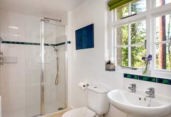 The shower-room is on the ground floor and looks out over the woods.