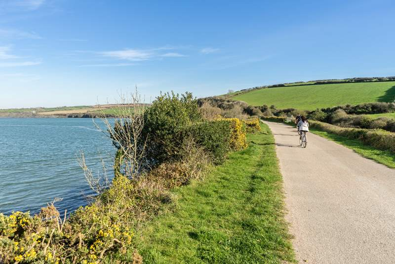 The Camel Trail that winds it way from Bodmin Moor out to Padstow on the coast.