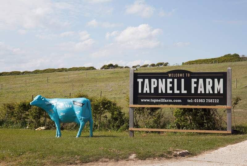 Tapnell Farm is definitely a place to visit with the little ones!