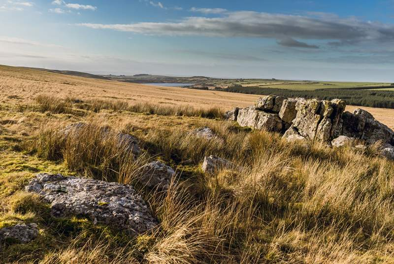 Bodmin Moor, with its 100 square miles of wide-open spaces and rock formations is within easy reach.