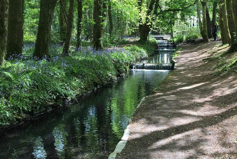 Tehidy Country Park is a magical place for a visit. There are picnic spots and also a café serving delicious refreshments.