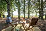 Whilst enjoying the far-reaching views and magical woodland setting.