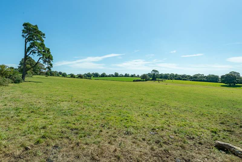 The Cowstall is on a family farm surrounded by fields and gentle rural views.