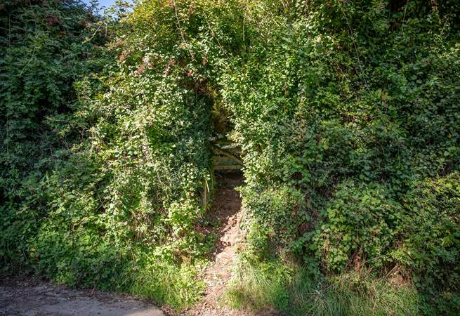 On the other side of this discreet passage you will find your very own piece of heaven in the form of your enclosed garden and summer-house.