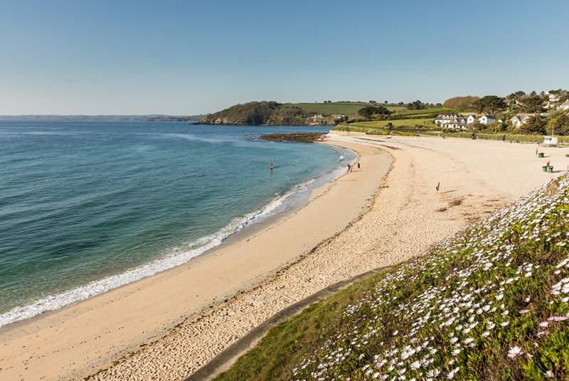 Sandy Gyllyngvase beach has a great cafe and paddle boarding on offer.