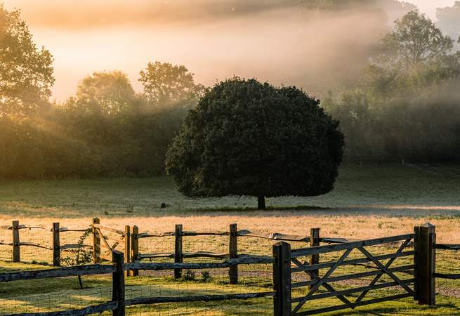 Wonderful Sussex countryside views.