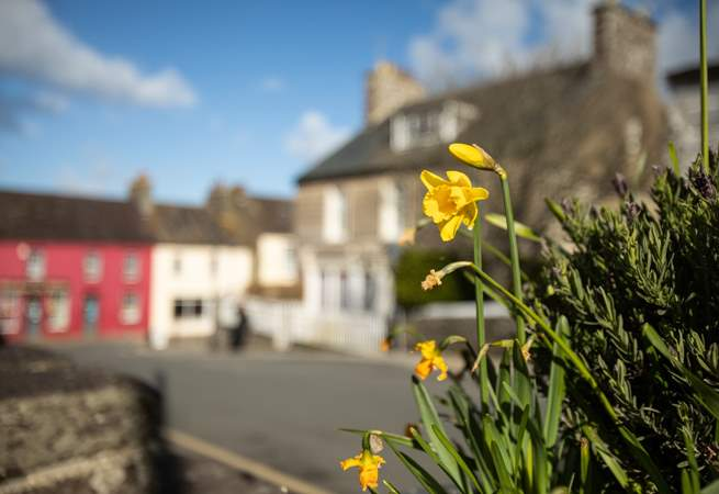 Beautiful spring day in St David's.