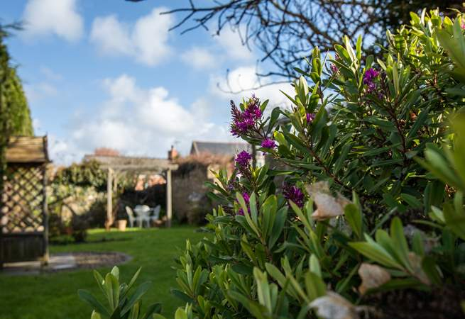 Relax in the beautiful gardens at Menai House.