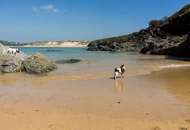 The gorgeous beach at Crantock!