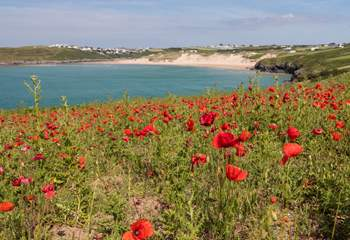 Take a stroll along the coast path taking in the gorgeous scenery as you go.