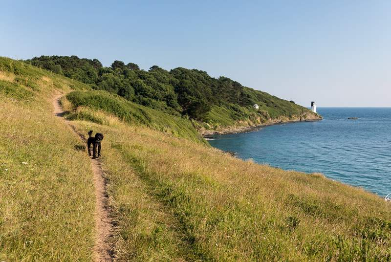 The Roseland is easily accessible via the King Harry Ferry, and there are many stunning walks.