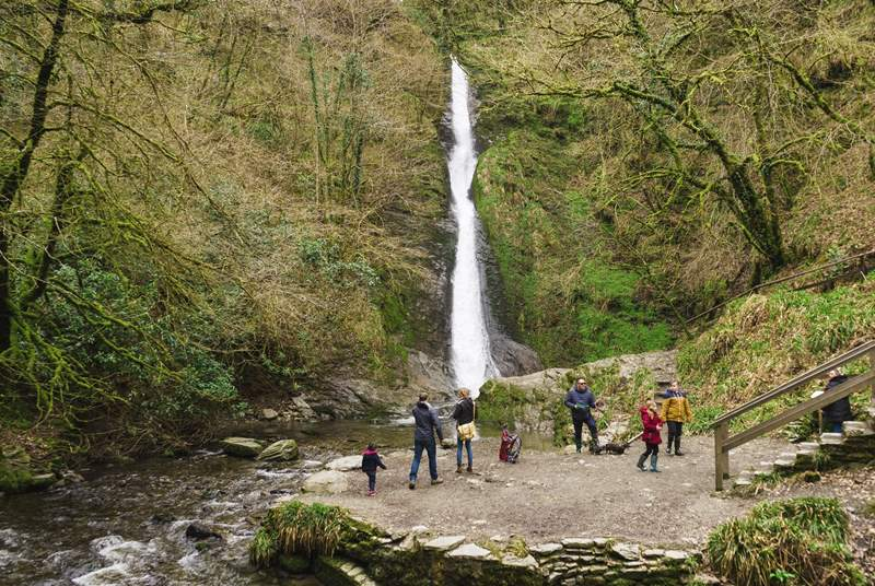 Lydford Gorge is a few minutes' walk from the front door, you can enjoy this wonderful family-friendly walk and you will even see the White Lady waterfall.
