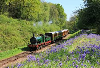 Visit The Bluebell Railway.  A great day out for the whole family.