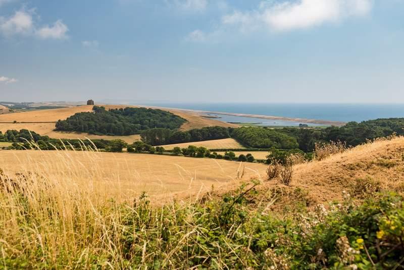 Rural Dorset is beautiful.