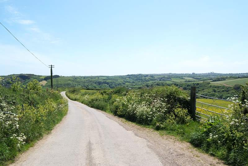 The pretty Cornish lane from Roskorwell Manor.