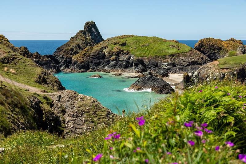 The Lizard peninsula is only a short drive away with spectacular coastal walks and scenery to explore - perhaps visit Kynance Cove?